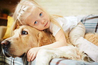 pet stains and pet odor removal boerne carpet cleaning pros