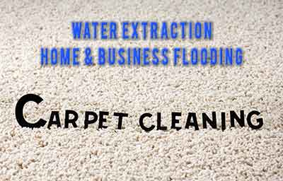 boerne carpet cleaning pros water extraction