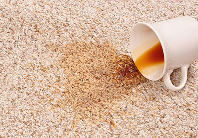 spot and stain removal tips boerne carpet cleaning pros